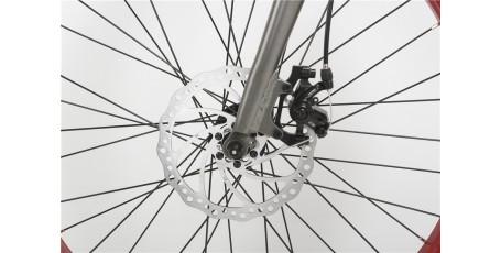 Bat-Bike Big Foot